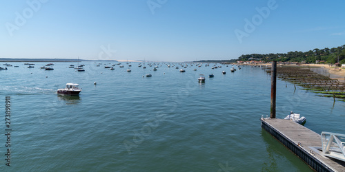 Arcachon Basin view of beach village L'Herbe in Cap Ferret in web banner templat Wallpaper Mural