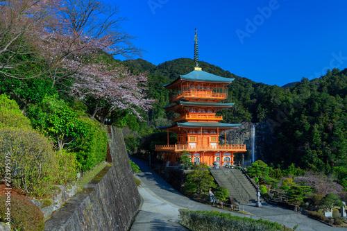 Canvas Print Japanese pagoda and Waterfall