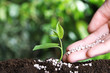 Leinwandbild Motiv Woman fertilizing plant in soil against blurred background, closeup with space for text. Gardening time