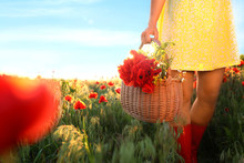 Woman With Basket Of Poppies And Wildflowers In Sunlit Field, Closeup. Space For Text