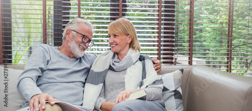 Canvas Print Portrait of happy old couple smiling in living room at home, caucasian senior couple relax in sofa