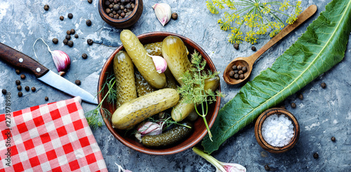 Photo  Plate with pickled cucumbers