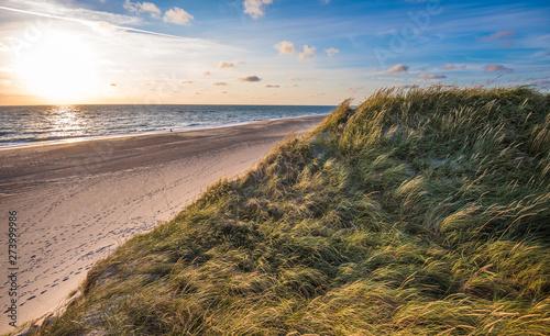 Obraz na plátně North sea beach, Jutland coast in Denmark