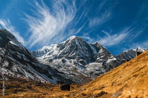 Annapurna Mountain in Nepal on a sunny afternoon Wallpaper Mural