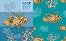 Lion Fish Sea Coral Reef Blue ...