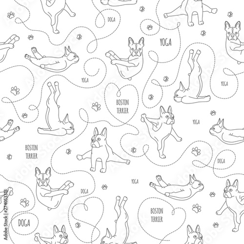 fototapeta na lodówkę Yoga dogs poses and exercises. French bulldog linear seamless pattern