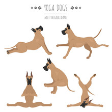 Yoga Dogs Poses And Exercises. Great Dane Clipart