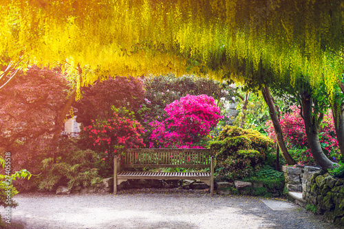 Foto auf Leinwand Melone Beautiful Garden with blooming trees during spring time, Wales, UK