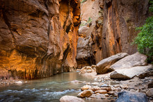 The Spectacular And Stunning Virgin River Weaves Through The Narrows, Zion National Park, USA, Landscape Aspect Low Down Angle