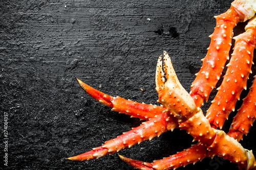Fresh sea crab. Canvas Print