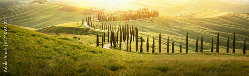 Foto  Italian Landscape with a Winding Road with Cypress Trees at Sunset