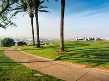 Los Angeles Downtown Skyline And Palm Trees As Seen From The Baldwin Hills, California