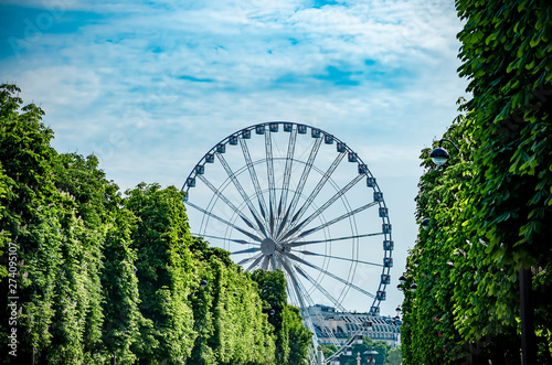 Foto op Plexiglas Historisch geb. Grande Roue de Paris, the Ferris wheel on Place de la Concorde in Paris