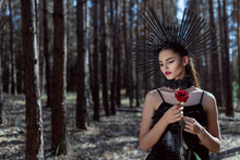Selective Focus Of Adult Woman In Witch Costume Standing On Forest Background, Holding Red Rose