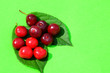 canvas print picture - Red ripe cherries  on green background, fruit pattern,photo