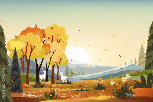 Landscapes of countryside in autumn farm field, mountains, wild grass and leaves falling from trees in yellow foliage.