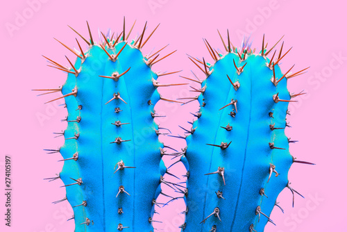 Canvas Prints Cactus Cacti colorful fashionable mood. Trendy tropical Neon Cactus plant on Pink Color background. Fashion Minimal Art Concept. Creative Style.
