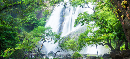 Panel Szklany Wodospad Gorgeous tropical waterfall on rain morning.