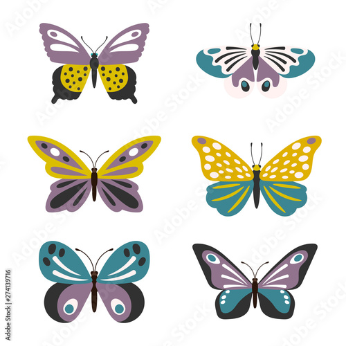 Fotografie, Obraz  Illustration of cute vector butterflies set isolated on white background