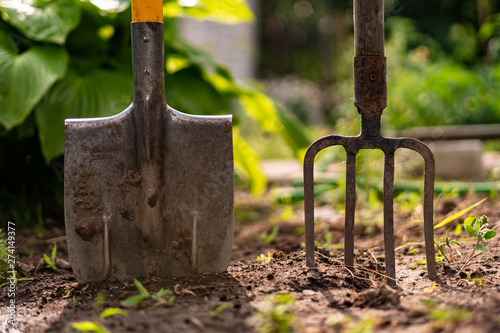 Valokuvatapetti inserted shovel and pitchfork into the ground in the garden