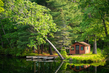Summer Home Cabin In The Woods...
