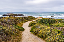 Walking Path On The Pacific Oc...