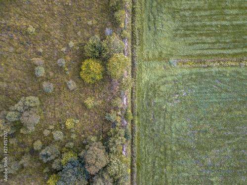 Nature vs agriculture Wallpaper Mural