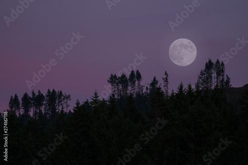 Montage in der Fensternische Schwarz Full Moon Rise Over Oyster Bay