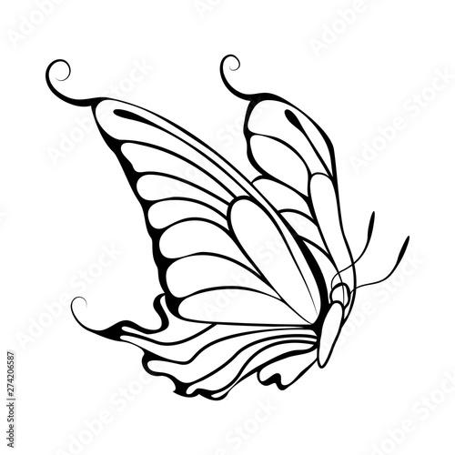 Fond de hotte en verre imprimé Papillons dans Grunge Sketch of Butterfly