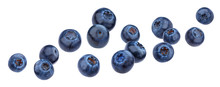 Falling Blueberry Isolated On White Background With Clipping Path