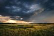 Unwetter zerstört die Ernte; Sturm über ein Getreidefeld bei Sonnenuntergang