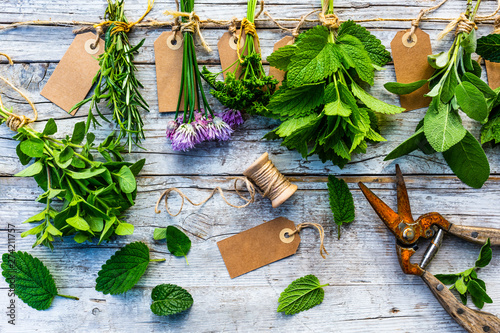 Poster Amsterdam Fresh herbs prepared for drying.