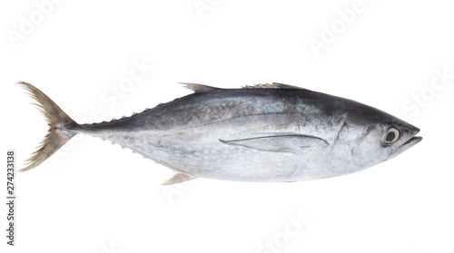Fresh tuna fish isolated on white background Wallpaper Mural