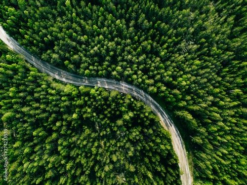 Slika na platnu Aerial view of green forest road. Curved road from above.