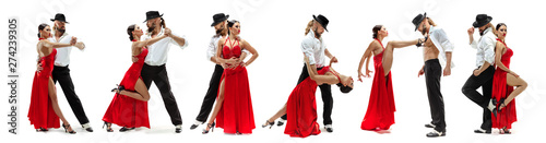 Elegance Latino dancers on white studio background Canvas Print
