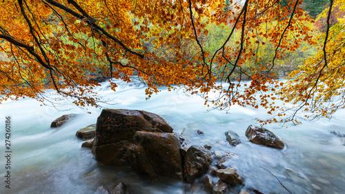 Cuadros en Lienzo Ordesa valley, Ordesa y Monte Perdido National Park, Huesca province, Aragon, Sp