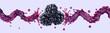 Fresh blackberry juice, smoothie or jam splash 3D swirls with juicy blackberries. Tasty berry juice splashing, blackberry juice isolated. Liquid healthy food or detox drink fruit design