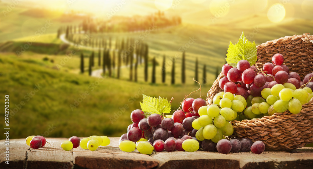 Fototapety, obrazy: Grapes In A Basket On A Wooden Background. Harvesting