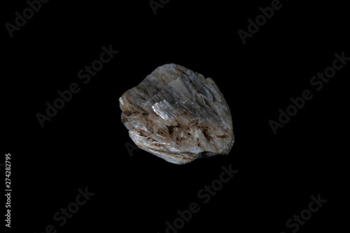 Grey Wollastonite Mineral on Black Canvas Print