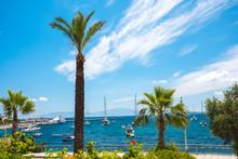View Of Bodrum Beach, Aegean S...