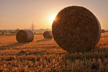 Fields, Ditzingen, Germany: Bales Of Straw On A Field In The Early Morning Light.