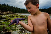 Front View Of Boy Holding A Starfish On The Beach