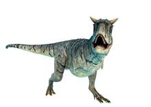 Carnotaurus Sastrei Running In A White Background