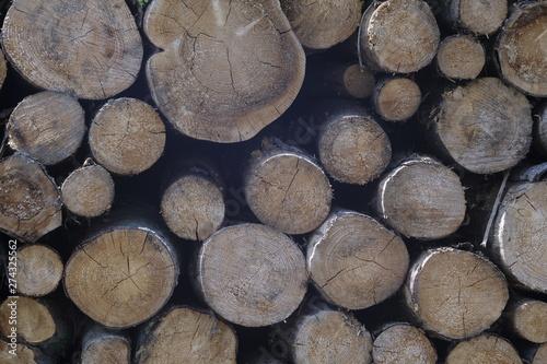 Türaufkleber Darknightsky Baum Stämme Stapel