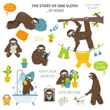 The Story Of One Sloth. At Hom...