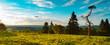 Beauty Rothaar Mountains