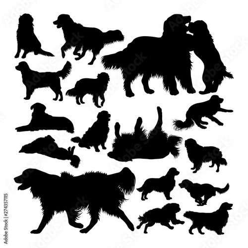 Golden retriever dog animal silhouettes Billede på lærred