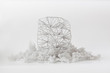 Abstrakte Netzstruktur auf 3D-Druck Stütz- Material. Abstract Net Structure on 3d-print support material.