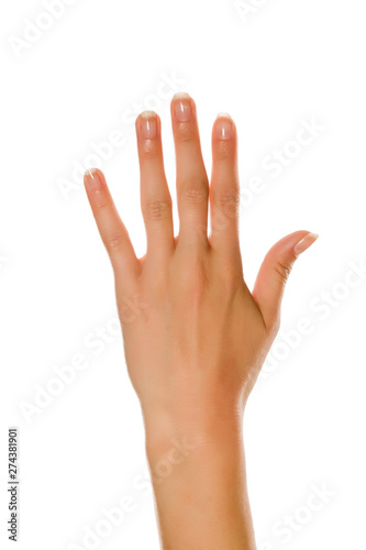 Closeup of female open left palm on white background Wall mural