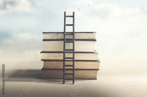 scale that reaches knowledge and freedom